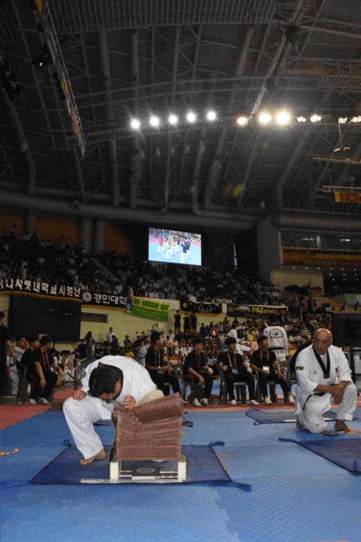 Read more about the article Campeonato Hanmadang Corea 2017